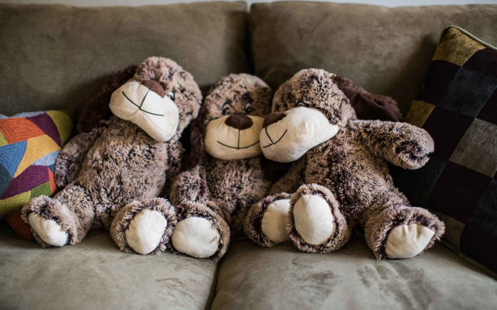 Three stuffed dogs on a couch